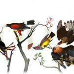 Logo Google festif