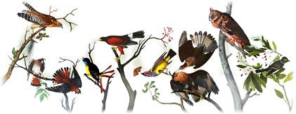logo Google festif Doodle