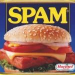 L'origine du mot spam