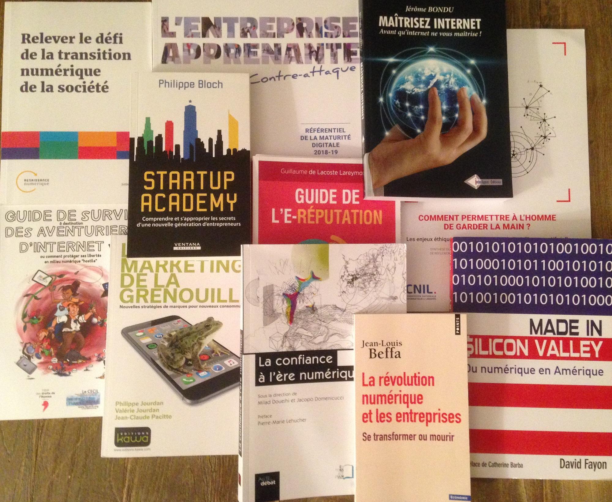 Sélection de livres ès numériques pour Noël